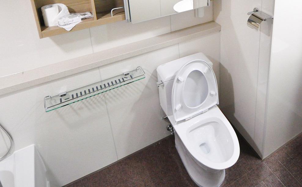 WC-Sitz Test