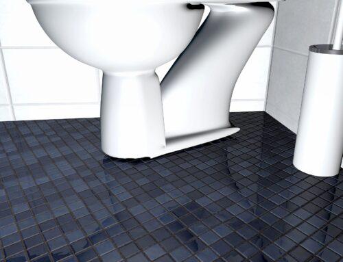 WC-Deckel: Test & Vergleich (01/2021) der besten Toiletten-Deckel