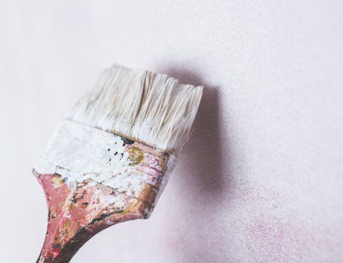 Anti-Schimmel-Farbe Test 2021: Vergleich der besten Anti-Schimmel-Farben