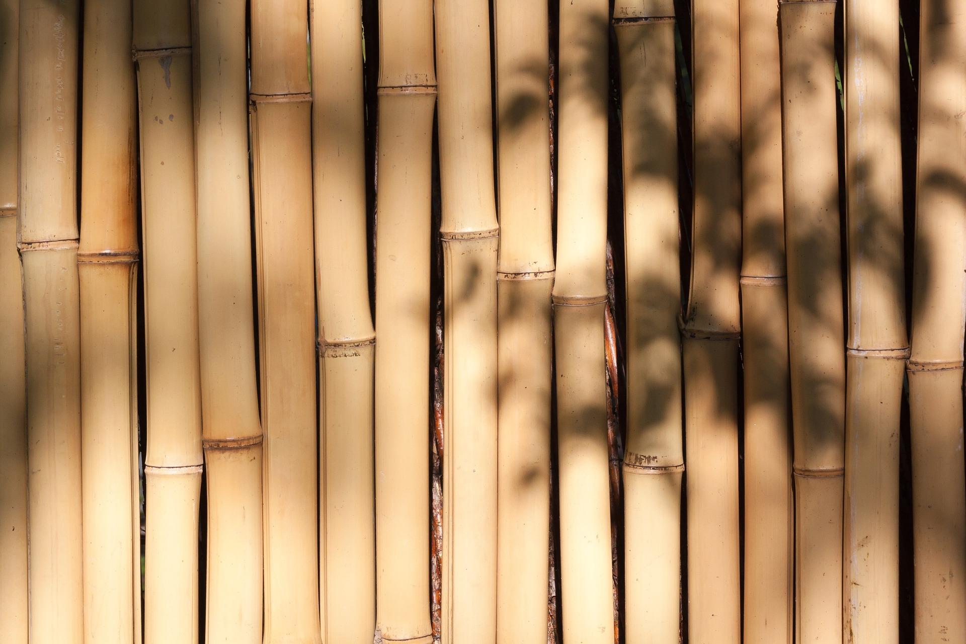 Bambusstab