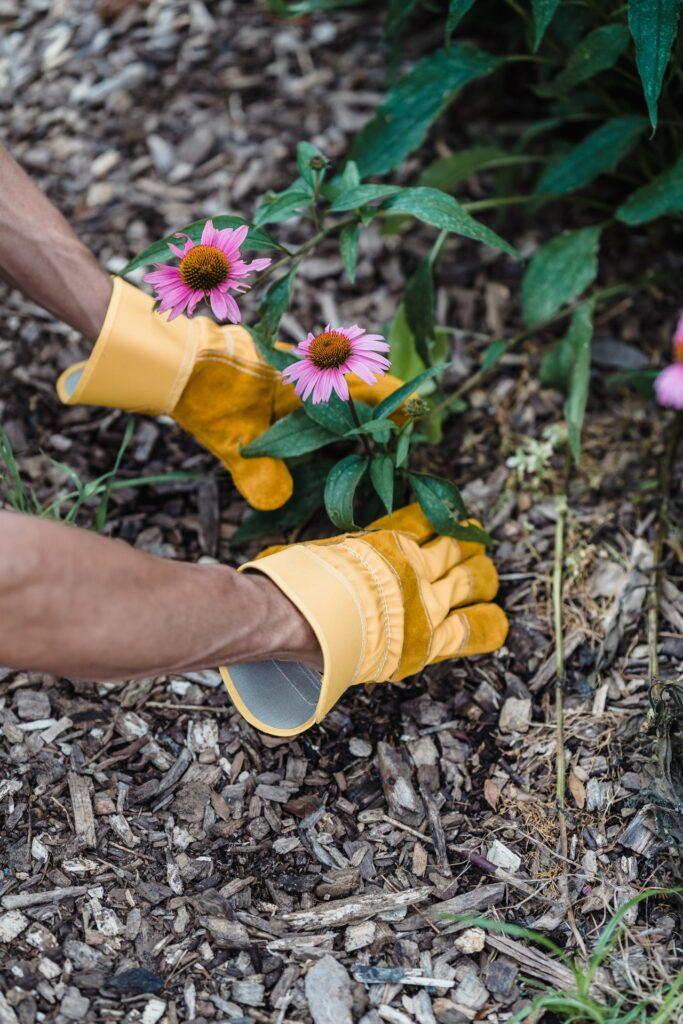 Billige Gartenhandschuhe können womöglich gesundheitsschädliche Stoffe enthalten, weshalb bei der Wahl auf Allergene geachtet und bestenfalls hochwertige Modelle gewählt werden sollten.